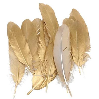 plumes d'oie